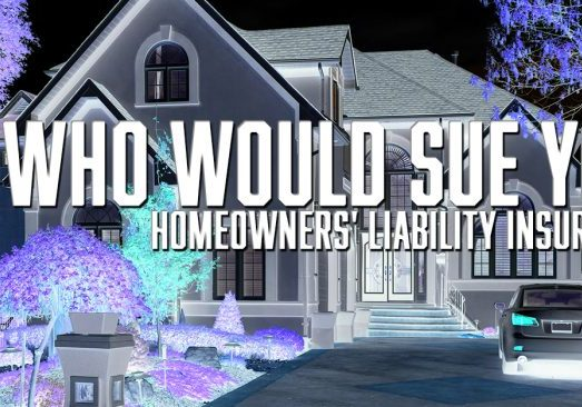 WHO WOULD SUE YOU Homeowners' Liability Insurance